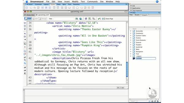 Using the CDATA structure: Dreamweaver CS3 Beyond the Basics
