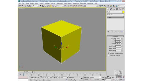 Sub-object transformations: 3ds Max 9 Modeling