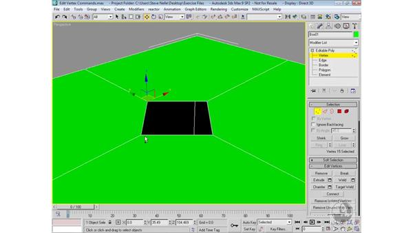 Sub-object vertex commands: 3ds Max 9 Modeling