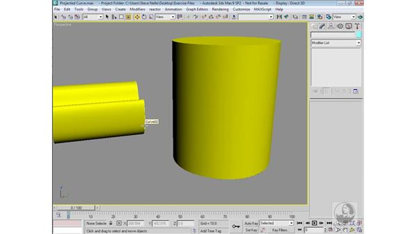 NURBS curves on surface: 3ds Max 9 Modeling