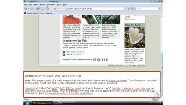 Experiencing a website via a screen reader: Web Accessibility Principles