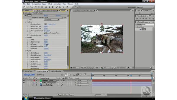 Creating realistic snowfall with Foam: After Effects CS3 Professional Beyond the Basics