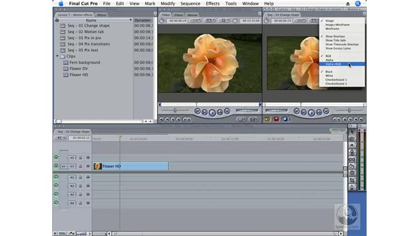 Canvas and Viewer controls: Final Cut Pro 6 Essential Effects