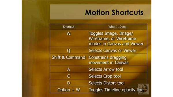 Motion effects summary: Final Cut Pro 6 Essential Effects