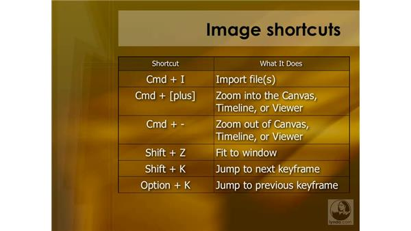Graphics and images summary: Final Cut Pro 6 Essential Effects
