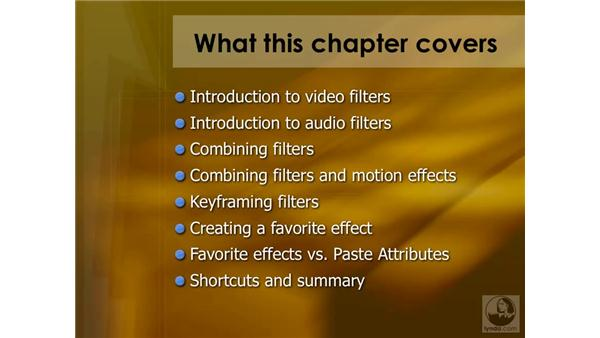 Introduction to filter effects: Final Cut Pro 6 Essential Effects