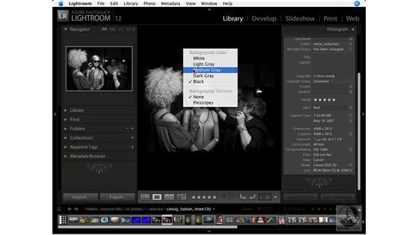 Understanding the Lightroom interface: Lightroom 1.1 New Features