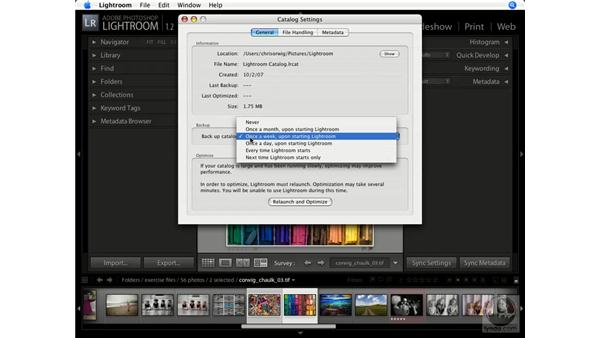 Modifying catalog settings: Lightroom 1.1 New Features