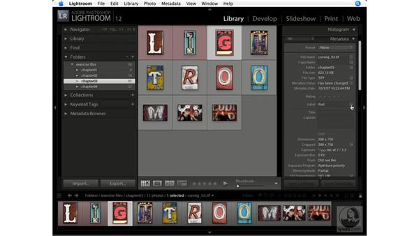 Working with metadata: Lightroom 1.1 New Features
