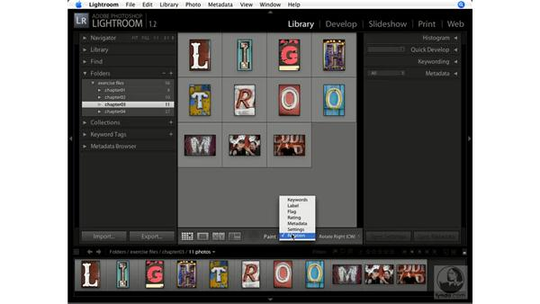 Using the Painter tool: Lightroom 1.1 New Features