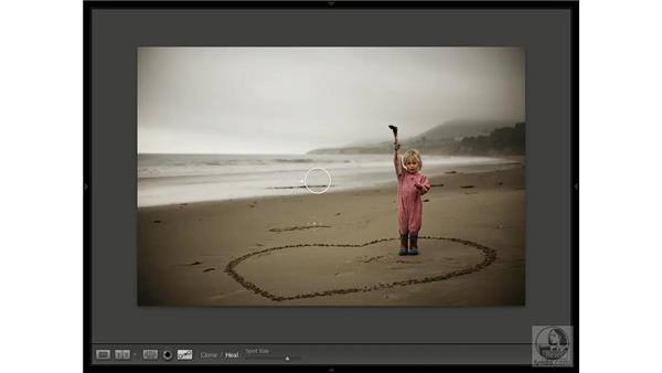 Removing spots: Lightroom 1.1 New Features