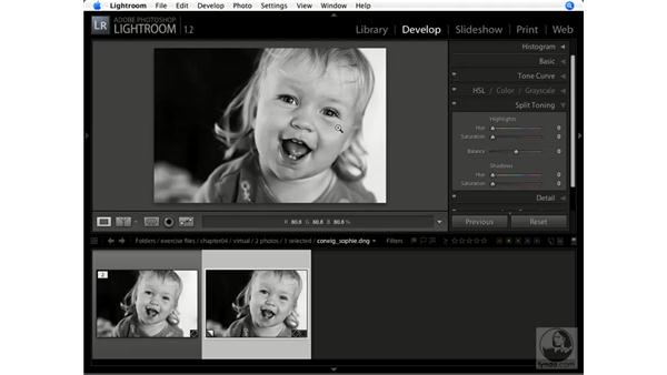 Working with virtual copies: Lightroom 1.1 New Features