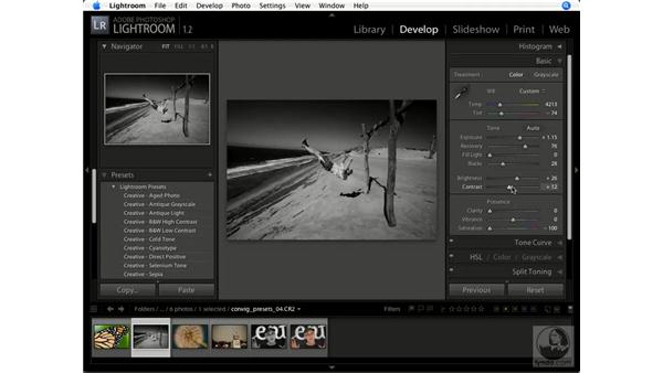 Applying presets: Lightroom 1.1 New Features