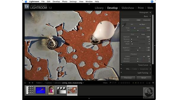 Increasing clarity: Lightroom 1.1 New Features