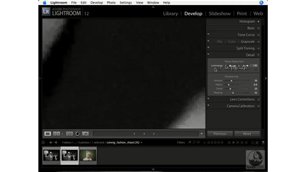 Reducing noise: Lightroom 1.1 New Features