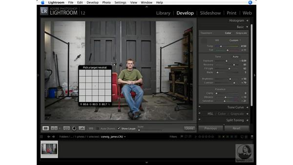 Using the White Balance tool: Lightroom 1.1 New Features