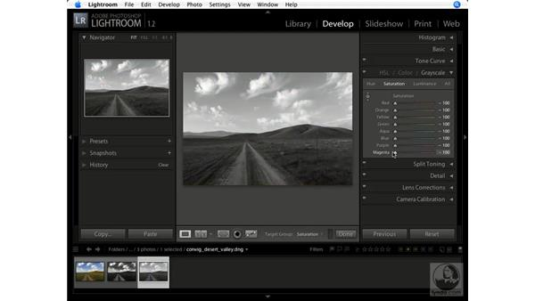 Converting to black and white: Lightroom 1.1 New Features