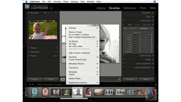 Navigation speed tips: Lightroom 1.1 New Features