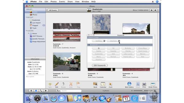 Adding keywords: iPhoto '08 Essential Training