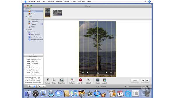 Straightening photos: iPhoto '08 Essential Training