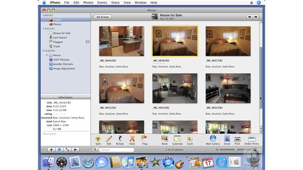 Adjusting highlights and shadows: iPhoto '08 Essential Training