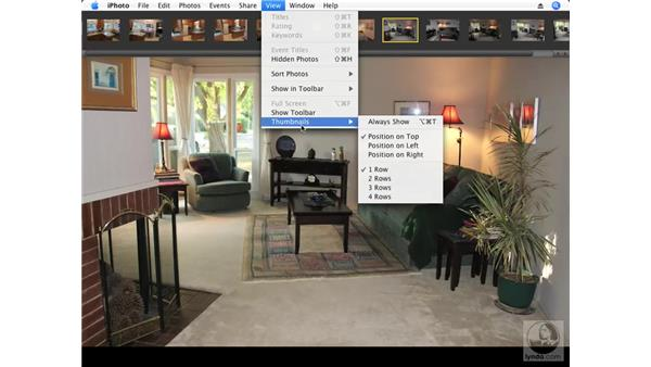 Copying adjustments and pasting them to multiple photos: iPhoto '08 Essential Training