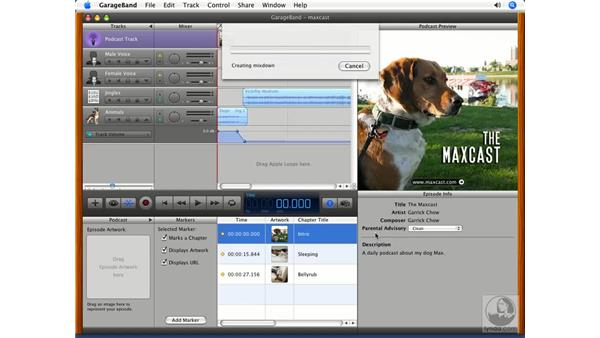 Exporting to iTunes and iWeb: GarageBand '08 Essential Training