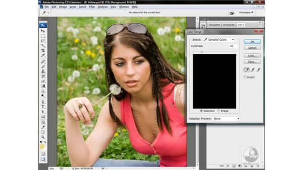 Initiating the color mask: Photoshop CS3 Channels & Masks: Advanced Techniques