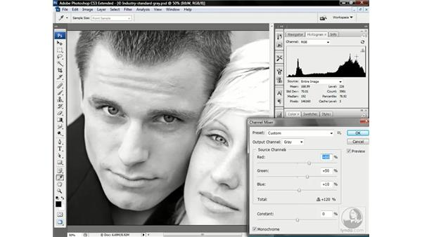 Mixing a custom black-and-white image: Photoshop CS3 Channels & Masks: Advanced Techniques