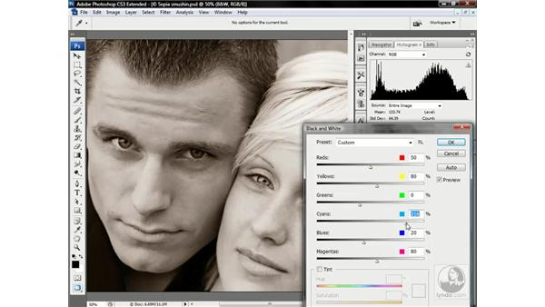 Employing the Black & White command: Photoshop CS3 Channels & Masks: Advanced Techniques