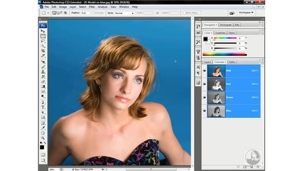 The Calculations command: Photoshop CS3 Channels & Masks: Advanced Techniques