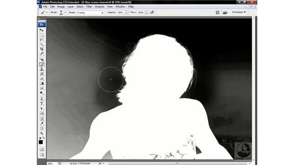 : Photoshop CS3 Channels & Masks: Advanced Techniques