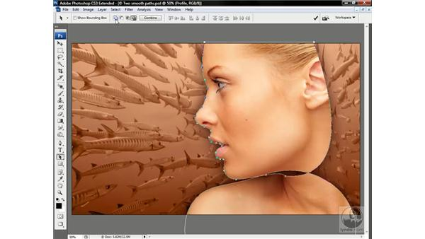 Combining paths in a vector mask: Photoshop CS3 Channels & Masks: Advanced Techniques