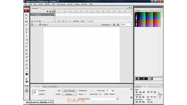 The interface: Flash CS3 for Designers