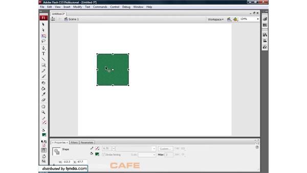 Free Transform: Flash CS3 for Designers
