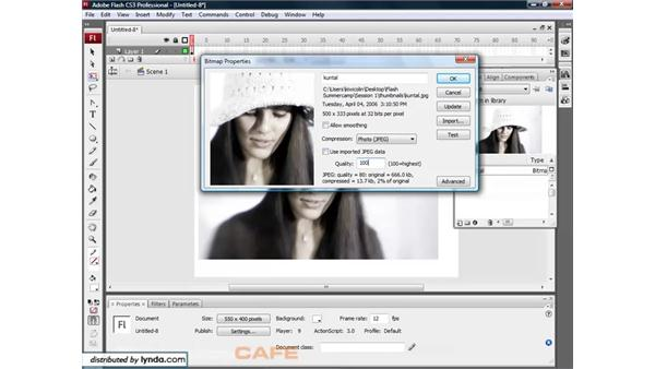 Importing bitmaps: Flash CS3 for Designers