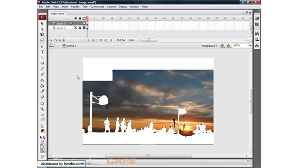 The Magic Wand tool: Flash CS3 for Designers