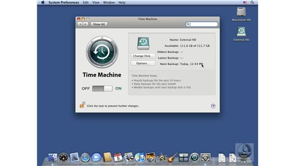 Enabling Time Machine and running software updates: Mac OS X 10.5 Leopard Essential Training