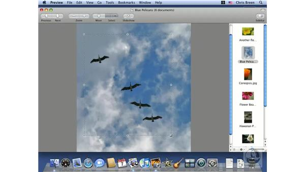 Working with images in Preview: Mac OS X 10.5 Leopard Essential Training