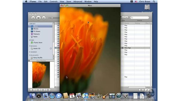 Tagging files: Mac OS X 10.5 Leopard Essential Training
