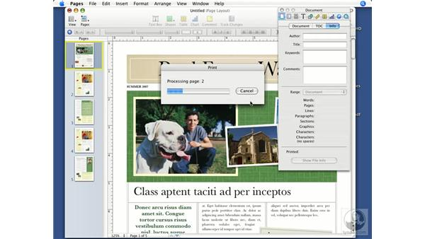 Viewing and adding document info: Pages '08 Essential Training