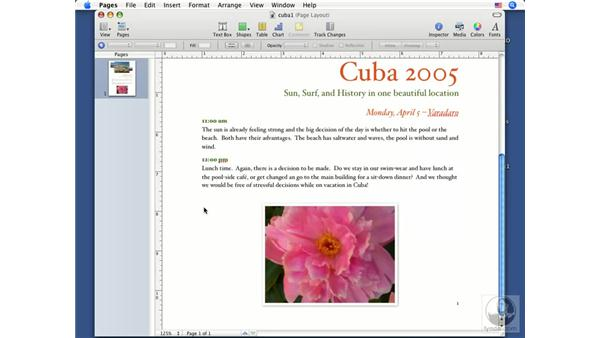 Linking text boxes: Pages '08 Essential Training