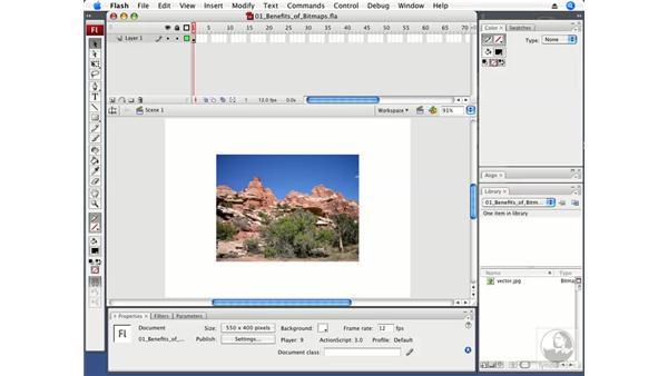 Understanding the benefits of bitmaps: Flash CS3 Professional Fundamentals