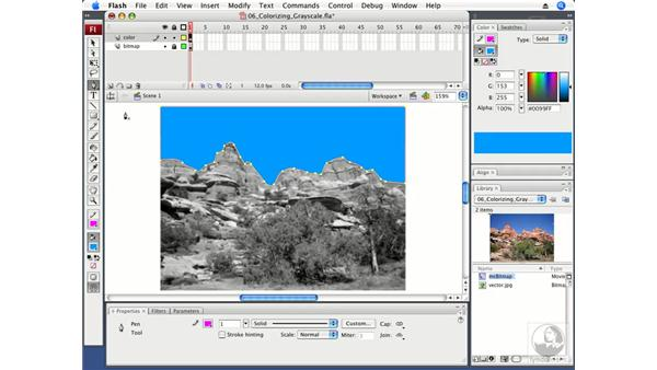 Colorizing a grayscale image: Flash CS3 Professional Fundamentals