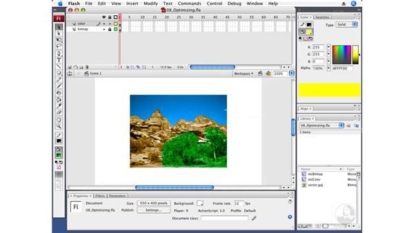 Optimizing movies: Flash CS3 Professional Fundamentals