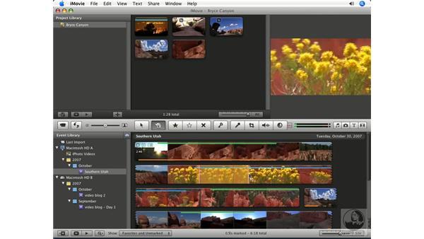 Using the advanced Edit tool: iMovie '08 Essential Training