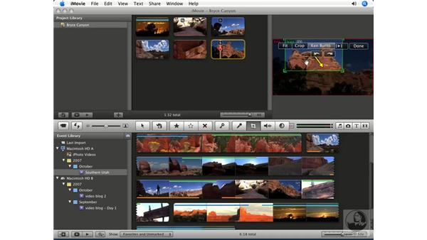 Creating and adjusting still clips: iMovie '08 Essential Training
