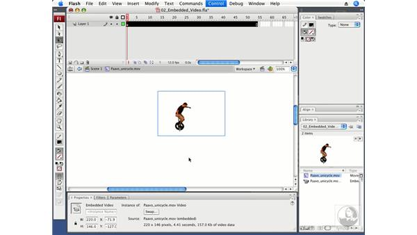 Working with embedded video: Flash CS3 Professional Beyond the Basics