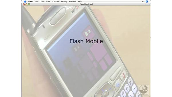 Understanding Flash Mobile: Flash CS3 Professional Beyond the Basics