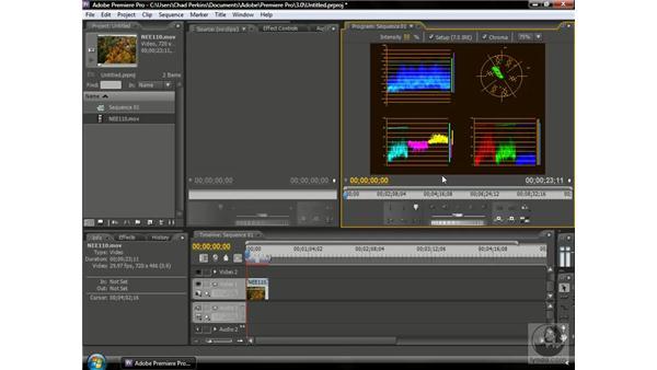 Understanding scopes: Premiere Pro CS3 Beyond the Basics